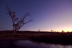 Finke River, Glen Helen, NT, Australia (Explore) photo by Bass Photography