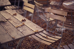 Automn Leaf Terrasse. (Explored) photo by Michael Scott Photographer