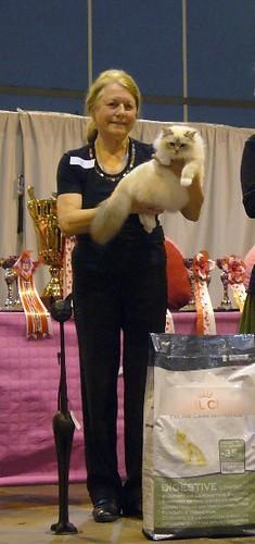 Divine Best Général à Toulouse fév 2009