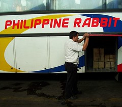 Loading the Rabbit photo by martindemo