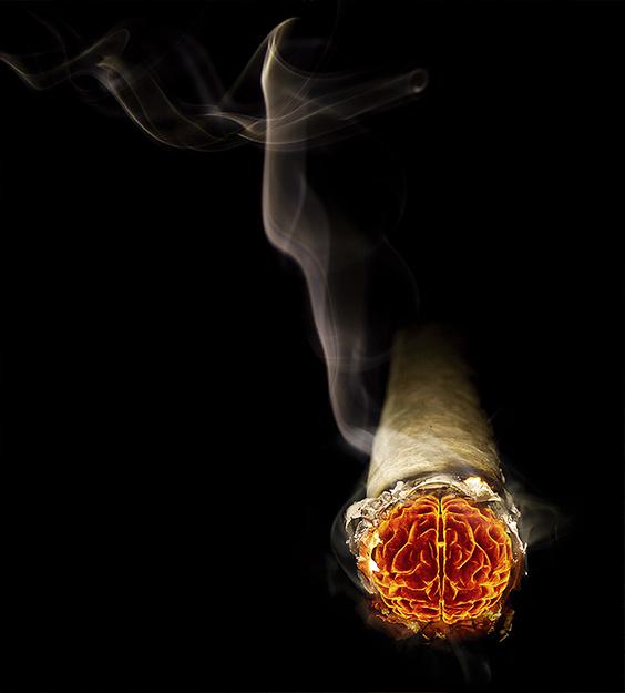 smokebrain