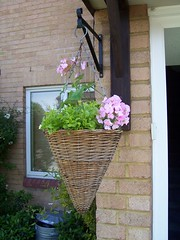 Front Hanging Basket