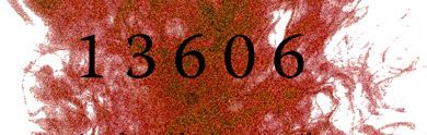 13606