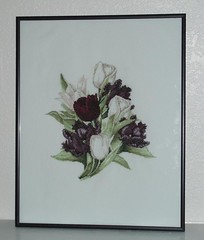 lanarte tulips 17.6.06