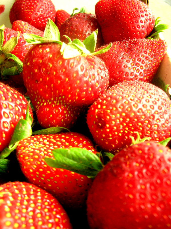 ventura strawberries
