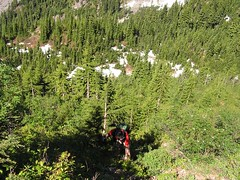Hiker Jim bushwhacking his way up the lower part of the slope