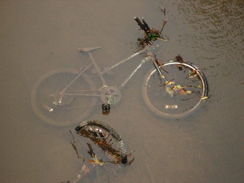 Discarded bike in the river