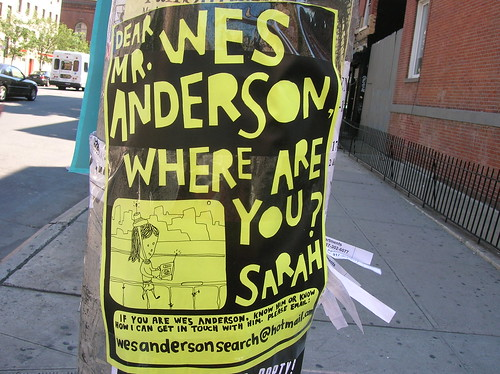 dear wes anderson