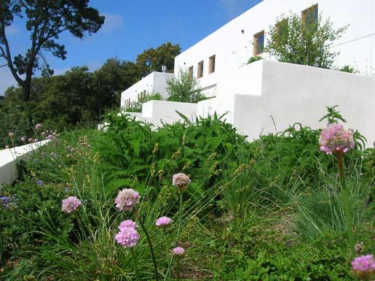 green roof, living architecture, rana creek