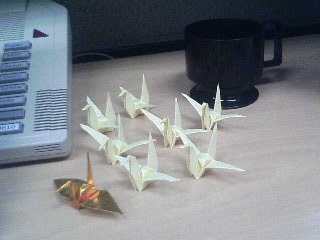 Cranes in the office
