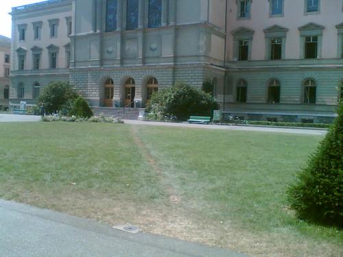 Elephant path in Geneva
