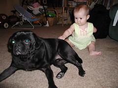 Petting Bubba