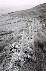 glen fence