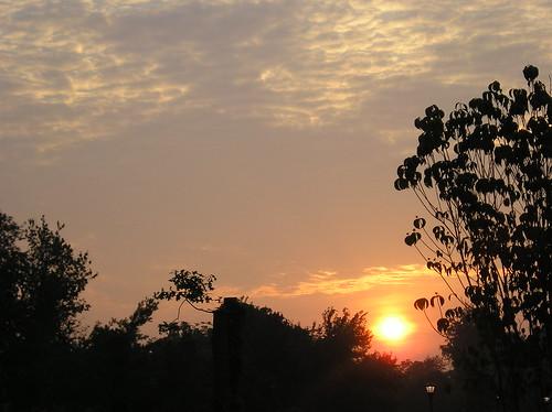Sunrise 8-25-06