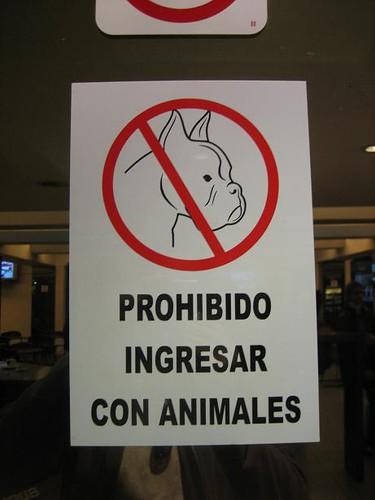 No perros!