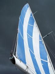 Auckland Sail