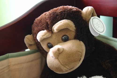 Monkey in crib