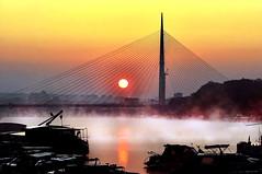 The Fog 2 photo by borkodinus Photography