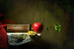 Still-Life photo by Arunas S
