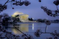 Jefferson lives... photo by theqspeaks