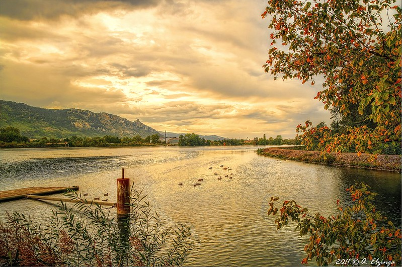 The Rhône river photo by alexander elzinga