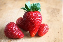 The king of strawberries photo by Dircinha -