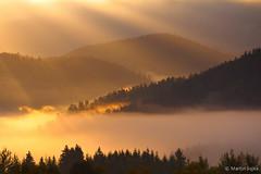 Morning Unfolding ~ Slovakia photo by Martin Sojka .. www.VisualEscap.es