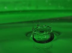 Splish Splash photo by Cherry Harrison
