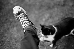 I'm helpin' you photo by Lyndsay Jobe