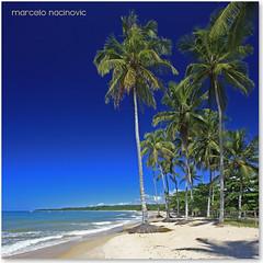 Praia dos Coqueiros em Trancoso photo by marcelo nacinovic
