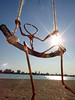 Get into the swing of Montrose Beach Harbor: 1