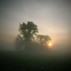 Sunrise Through The Mist photo by Arunas S