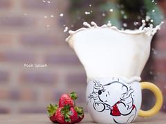 Pooh Splash photo by Cocoa Bean.