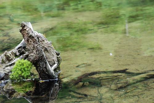 20070717 上高地:河童橋-明神池
