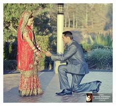 Hindu Sikh Punjabi Wedding Photography Sydney photo by Photographer Sydney