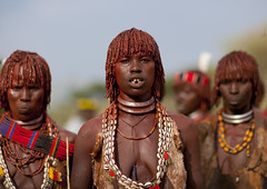 Hamer women during ceremony - Turmi area Ethiopia photo by Eric Lafforgue