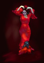 The Flamenco Dancer photo by Pat McDonald