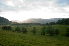 Abendsonne im Jura