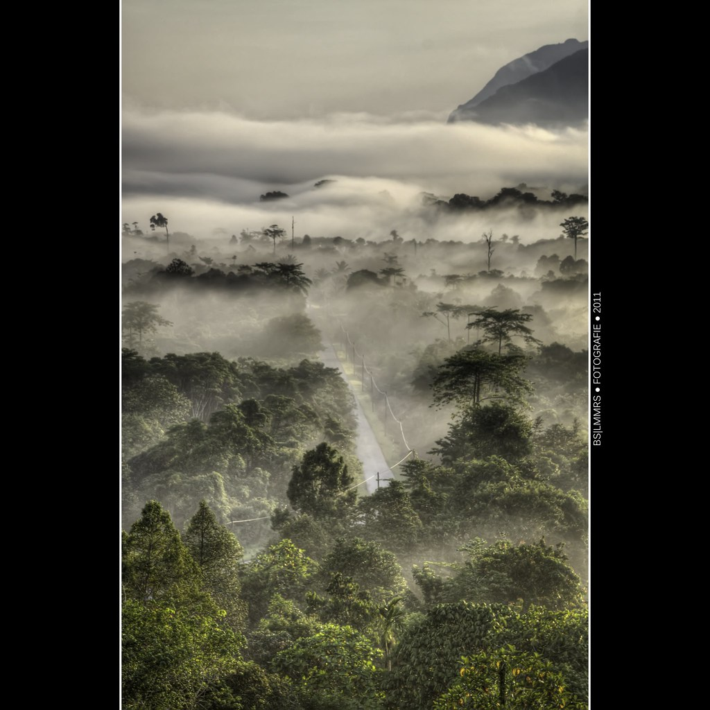 Malaysia: Road to Mulu Airport photo by Bas Lammers