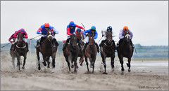 Laytown Races photo by Elaine Hughes