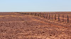Outback grazing land