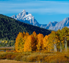 The OxBow Bend Teton Fall photo by Jerry T Patterson