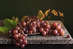 Cardinal Grape photo by panga_ua