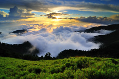Sea of clouds in Mt. Hehuan 合歡雲海 photo by Vincent_Ting