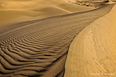 This is California No. 15 - The Other Side of the Death Valley Dunes photo by Wizard of Wonders™