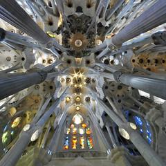El Milagro de Gaudi photo by Fotomondeo