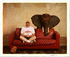 Pet Elephant photo by Studio d'Xavier