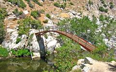 Deep Creek Bridge (2767)