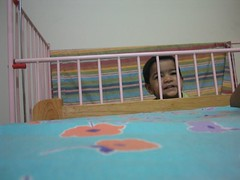 Hiding in the cot
