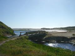 Abbotts Lagoon - Bridge